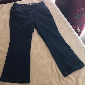 New - Dark blue Flare Leg Jeans